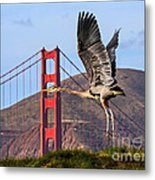 Great Blue At The Golden Gate Metal Print