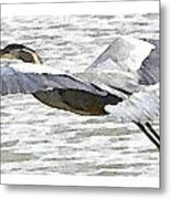 Great Blue Flight Metal Print