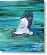 Great Blue Heron-3a Metal Print