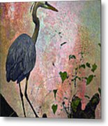 Great Blue Heron Among Cypress Knees Metal Print