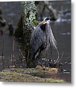 Great Blue Heron On The Clinch River Metal Print