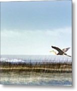 Great Blue Heron - Orange Beach Alabama Metal Print