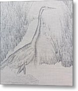 Great Blue Heron Pencil Drawing Metal Print