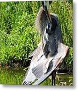 Great Blue Heron Yoga Metal Print