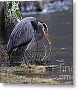 Great Blue On The Clinch River II Metal Print