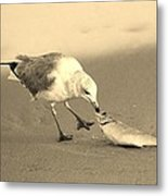 Great Catch With Fish Metal Print