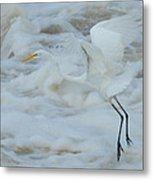 Egret Above Cloud Or Water Metal Print