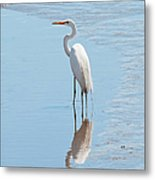Great Egret And Reflection Metal Print