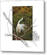 Great Egret - Stretch Metal Print