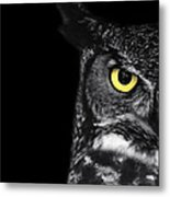 Great Horned Owl Photo Metal Print