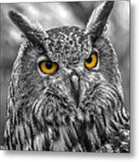 Great Horned Owl V9 Metal Print