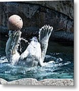 Great Polar Catch By Willie Metal Print