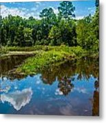 Great Reflections Metal Print
