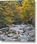 Great Smoky Mountains Creek 4 Metal Print