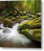 Great Smoky Mountains Gatlinburg Tn Roaring Fork - Gift Of Life Metal Print