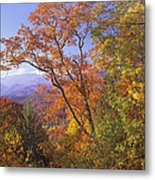 Great Smoky Mts From Blue Ridge Pkwy Metal Print