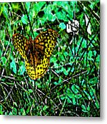 Great Spangled Fritillary Ins 49 Metal Print