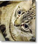 Missing You Baby Girl Metal Print