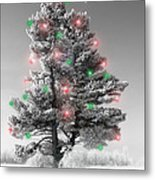 Great White Christmas Pine Metal Print