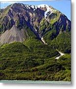 Green Alaska Metal Print