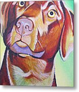 Green And Brown Dog Metal Print