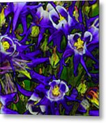 Green And Purple Burst Abstract Metal Print by James Hammen