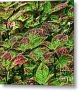 Green And Purple In Nature Metal Print