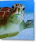 Green Back Turtle Metal Print