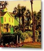 Green Beauty At Isle Of Palms Metal Print