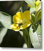 Green Bee Metal Print
