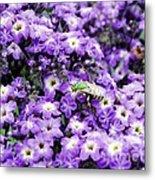 Green Bee Tiny Pollinator Metal Print
