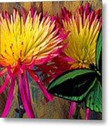 Green Butterfly On Fire Mums Metal Print