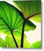 Green Canopy Pastel Metal Print