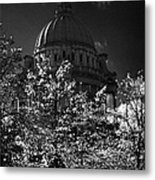 Green Copper Dome Of Belfast City Hall With Blue Cloudy Sky Behind Trees With Autumn Leaves Vertical Metal Print