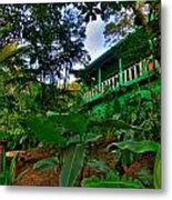 Green Costa Rica Paradise Metal Print by Andres Leon