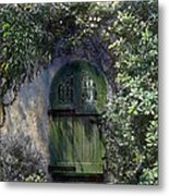 Green Door Metal Print by Terry Reynoldson