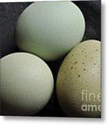 Green Eggs Metal Print