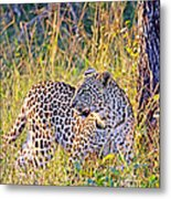 Green Eyed Leopard Metal Print