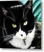Green Eyed Queen Metal Print