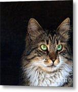 Green Eyes Metal Print