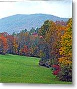 Green Field In The Fall Metal Print