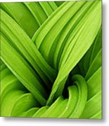 Green Folds Metal Print