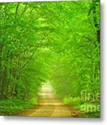 Green Forest Tunnel Metal Print