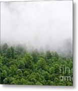 Green Forest With Clouds Metal Print