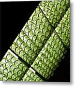 Green Glass Metal Print