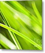 Green Grass Abstract Metal Print