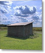 Green Grass And Blue Skies Metal Print