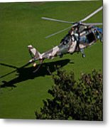 Green Grass Landing  Metal Print