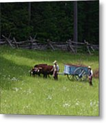Green Grass Of Home Metal Print