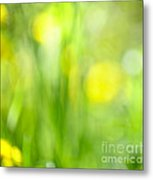 Green Grass With Yellow Flowers Abstract Metal Print
